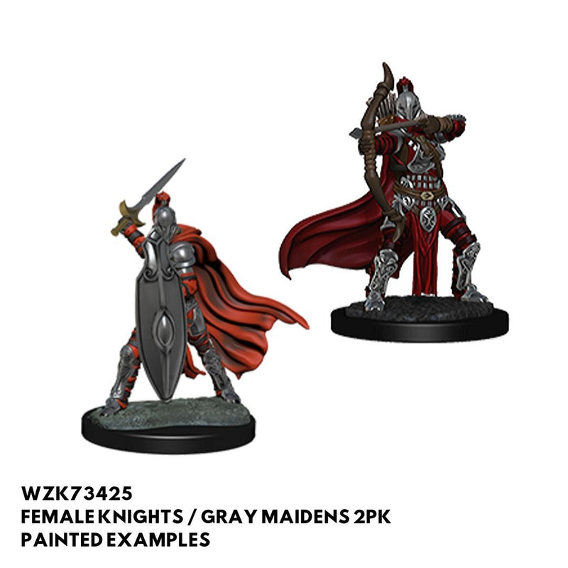 Pathfinder Miniatures - Female Knights Gray Maidens - Painted