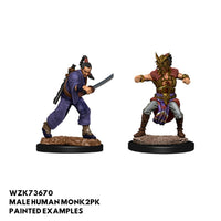 D&D Minis - Male Human Monk - painted