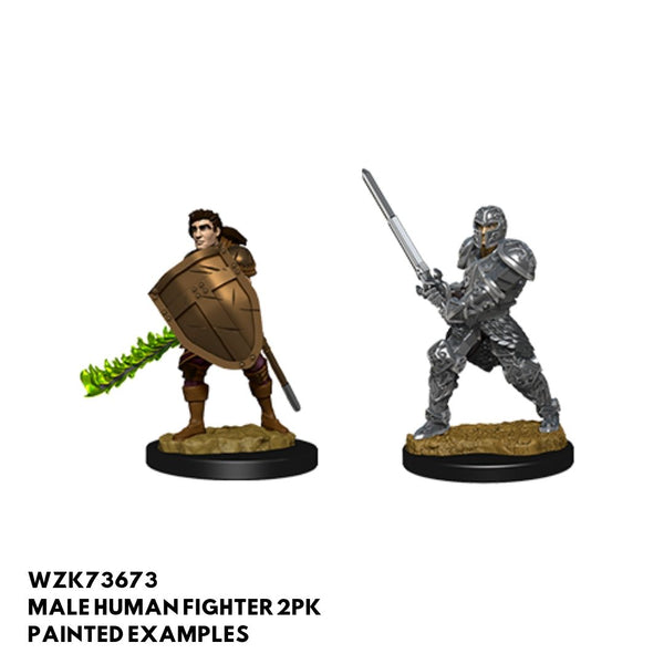 D&D Minis - Male Human Fighter - painted