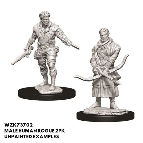 WZK73702 Male Human Rogue 2pk - Unpainted Examples
