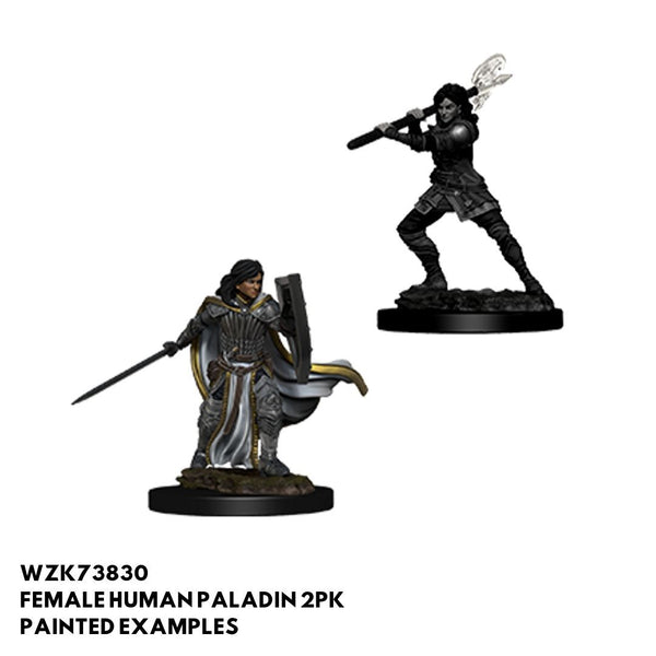 D&D Minis - Female Human Paladin 2pk - Painted