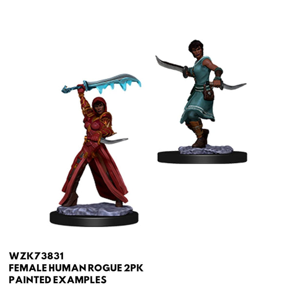 D&D Minis - Female Human Rogue - painted