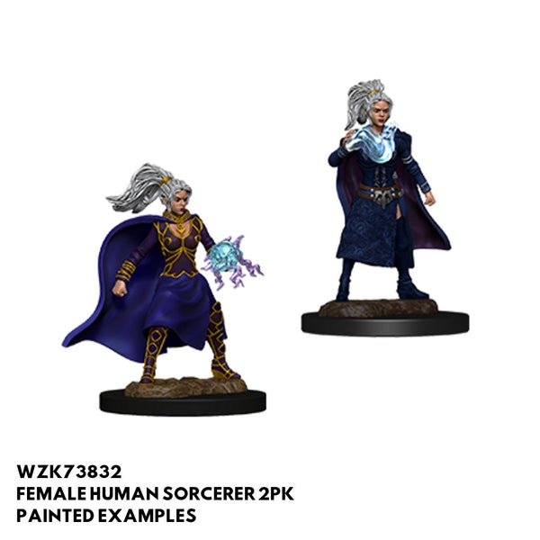 D&D Minis - Female Human Sorcerer 2pk - Painted