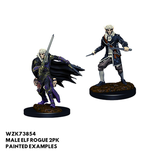 Pathfinder Miniatures - Male Elf Rogue - Painted