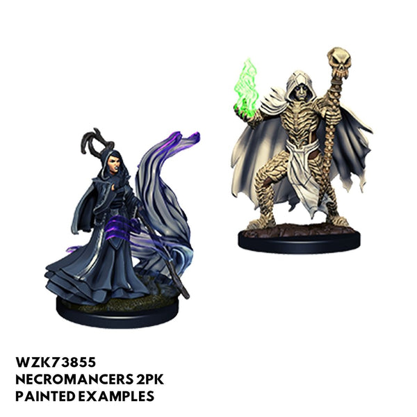 Pathfinder Miniatures - Necromancer - Painted
