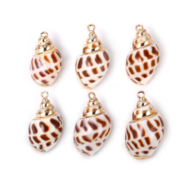 6PCS Real Spiral Seashells Conch Shells Pendant
