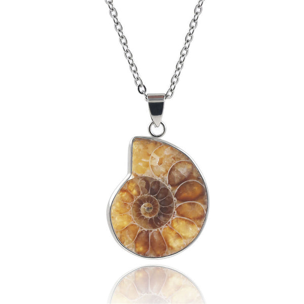 1PCS Natural Spiral Ammonite Fossil Conch Shell Pendant Necklace With 3 Free Chains