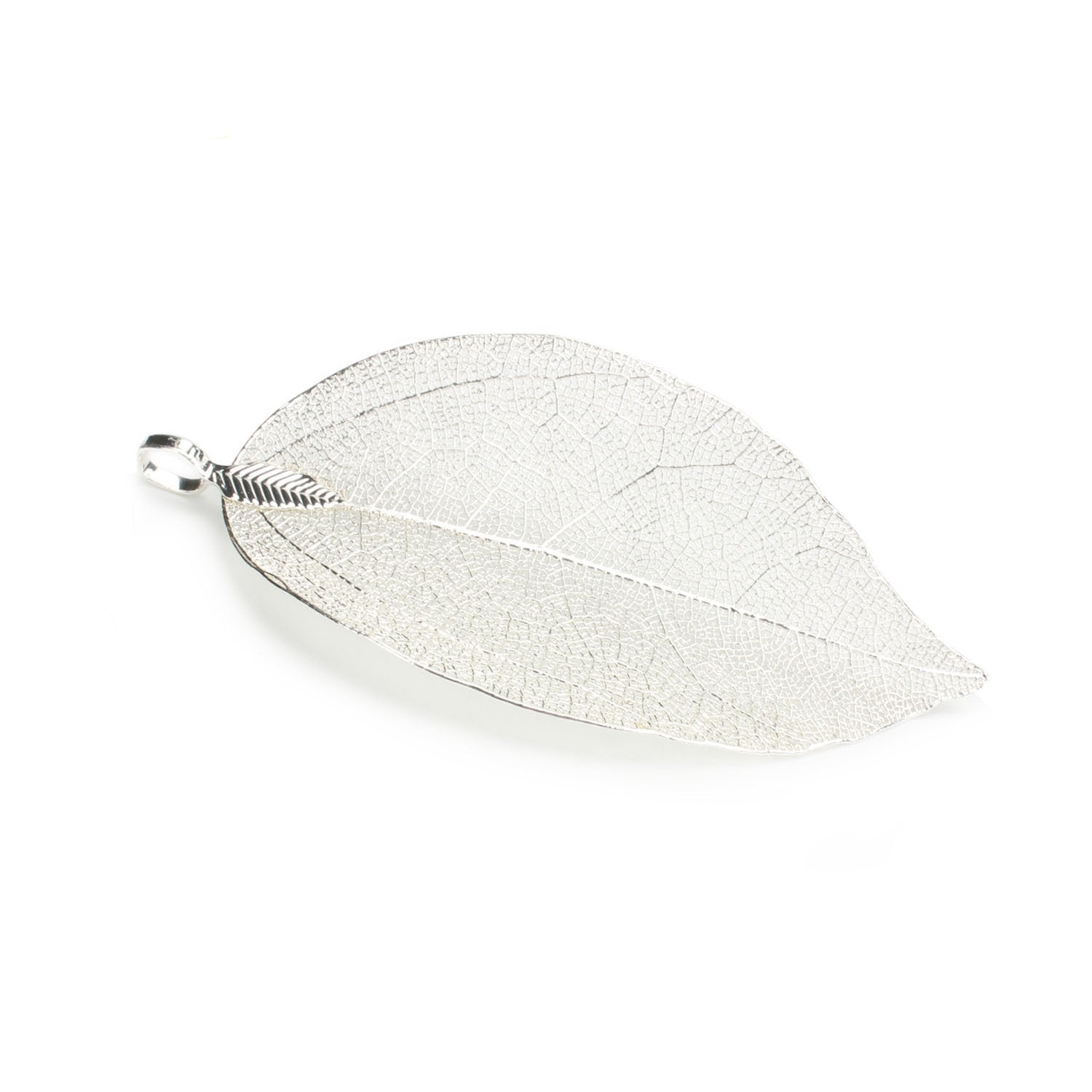 6PCS Silver Plated Natural Real Filigree Leaf Pendants
