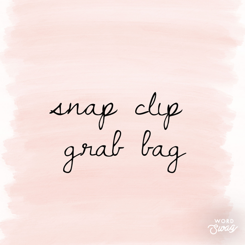 GRAB BAG - Snap Clips