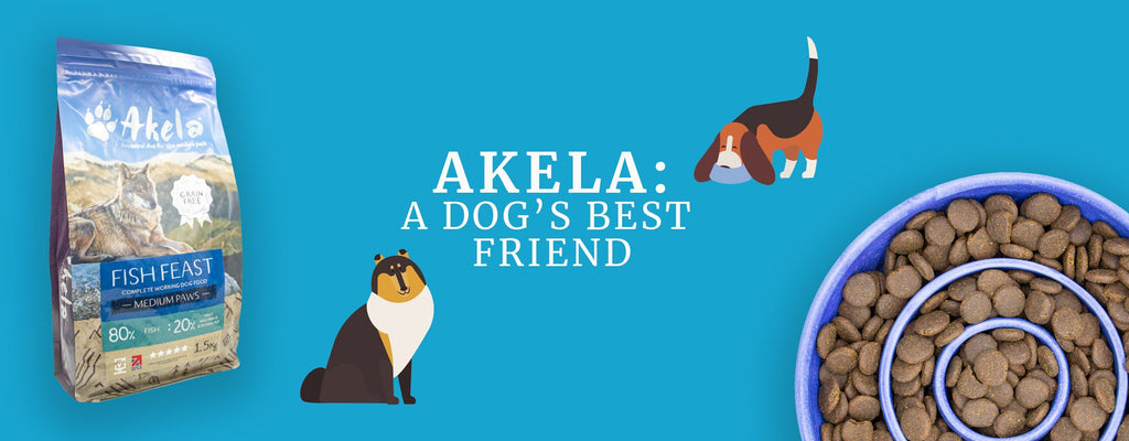 Akela: A Dog's Best Friend