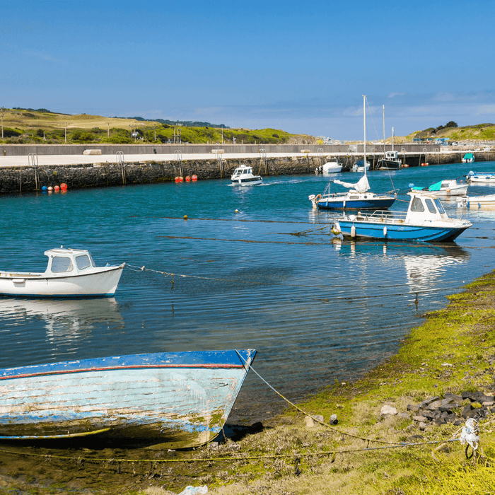 Explore Hayle Harbour with your Hound