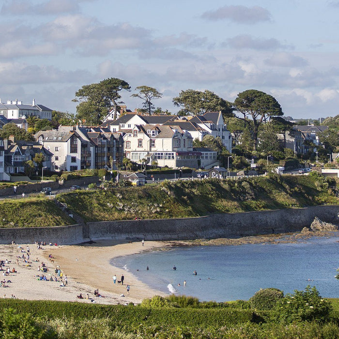 Falmouth for your Furry Friend