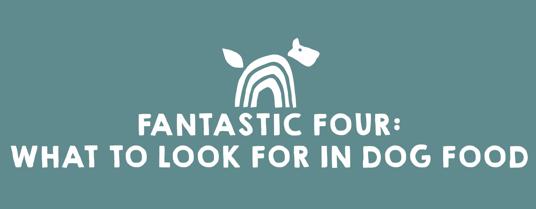 Fantastic Four: What To Look For In Your Dog Food
