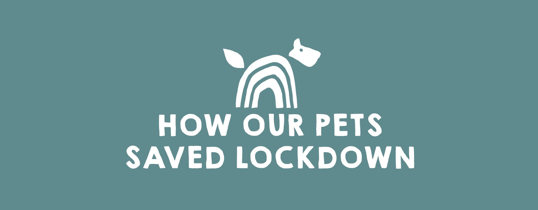 How Our Pets Saved Lockdown
