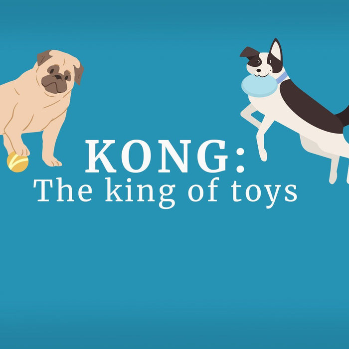 KONG: The King of Toys