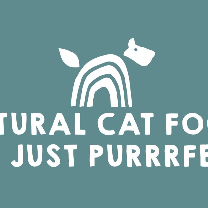 Natural Cat Food: It's just Purrrfect