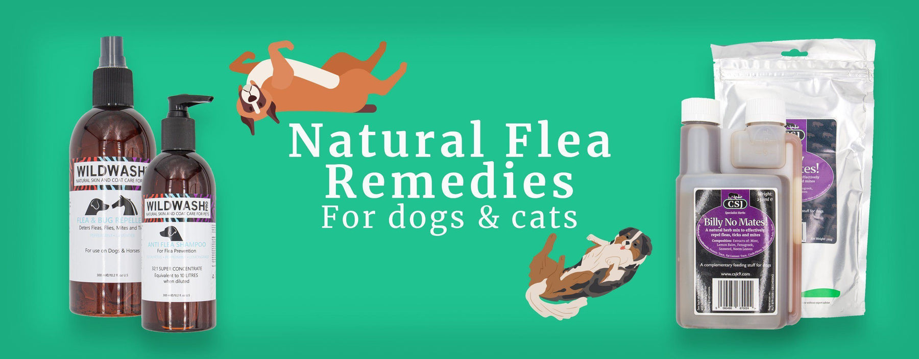 Natural Flea Remedies for dogs and cats