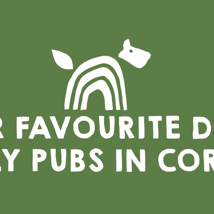 Our Favourite Dog Friendly Pubs in Cornwall