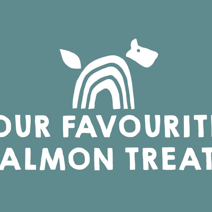 Our Favourite Salmon treats
