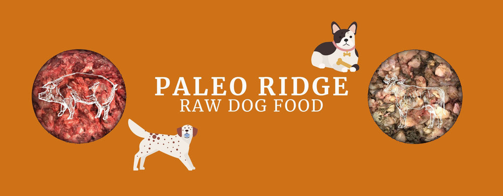 Paleo Ridge Raw Dog Food