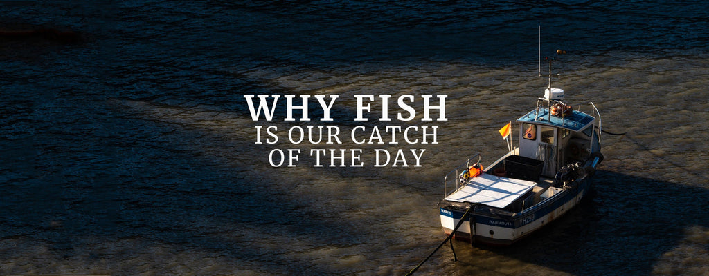 Why Fish Is Our Catch Of The Day