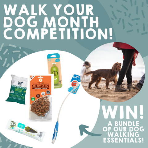 Walk Your Dog Month Competition