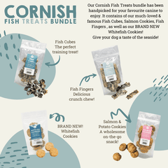 Cornish fish selection box for dogs