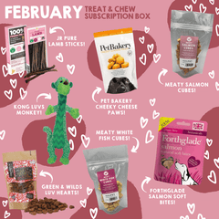 Natural Cornish Pet store Monthly Treat Subscription Box for Dogs products