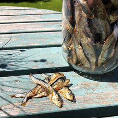 Jar of dried sprats on table in sunshine