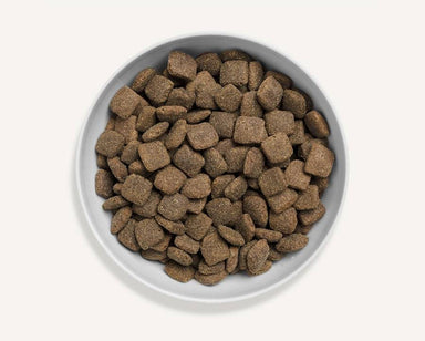 Canagan Dog Grass Fed Lamb Dog Food - Dry Canagan