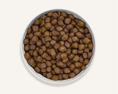 Canagan Dry Dog Food Dental Dog Food - Dry Canagan