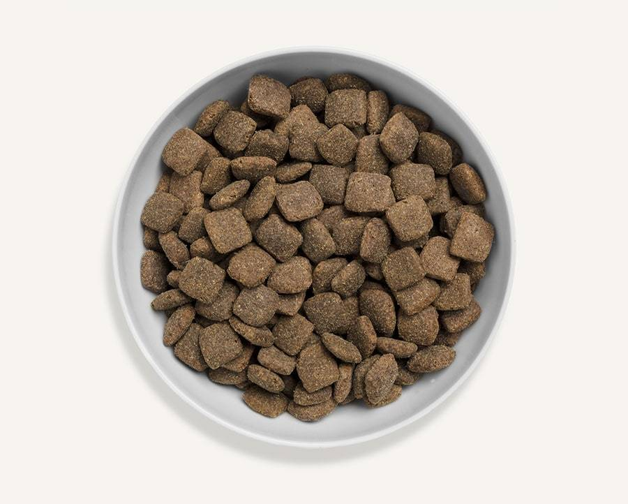 Canagan Grass Fed Lamb Hamper Dog Food - Dry Canagan