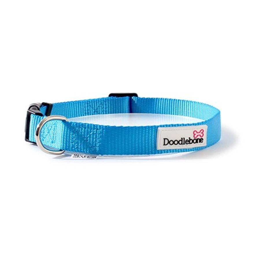 Doodlebone Bold Nylon Collar Cyan Dog Collars and Leads Doodlebone