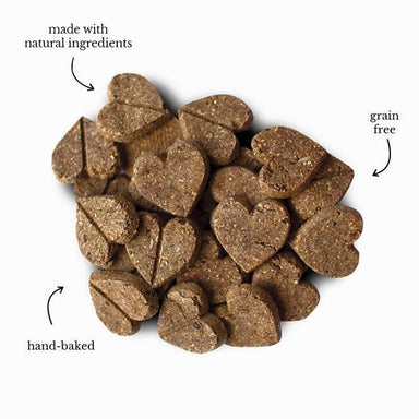 Forthglade Natural Soft Bite Treats with Salmon 60g Dog Treats Forthglade