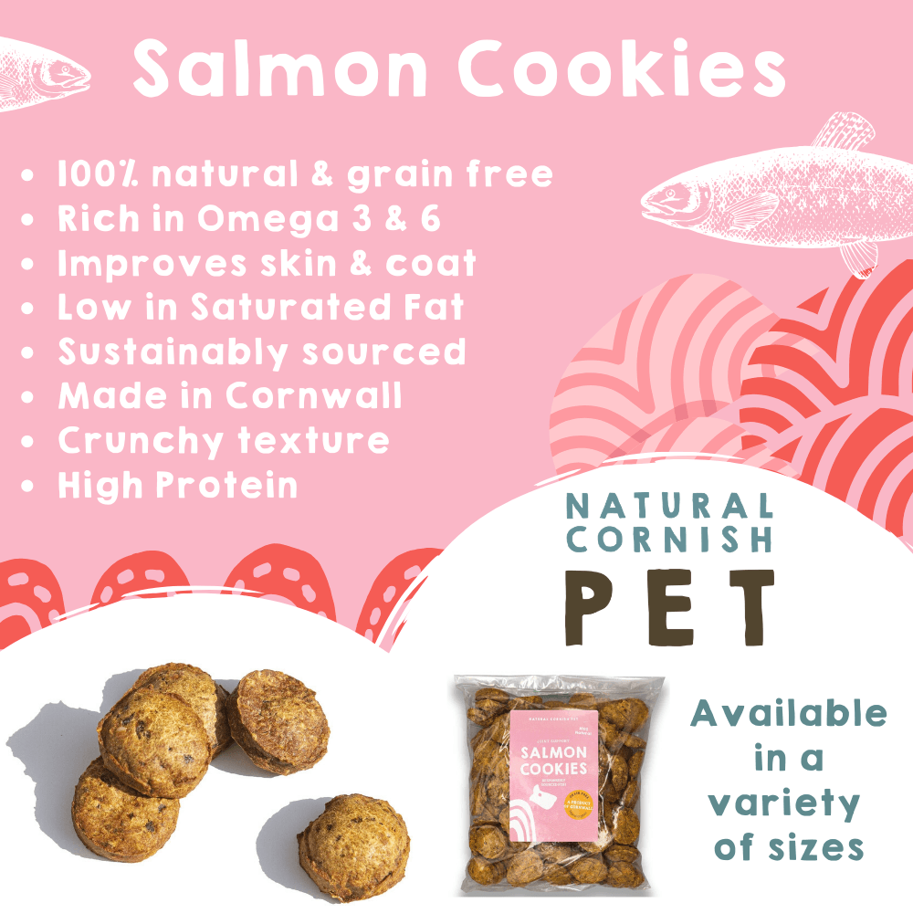 Salmon & Potato Cookies 85g Dog Treats Natural Cornish Pet