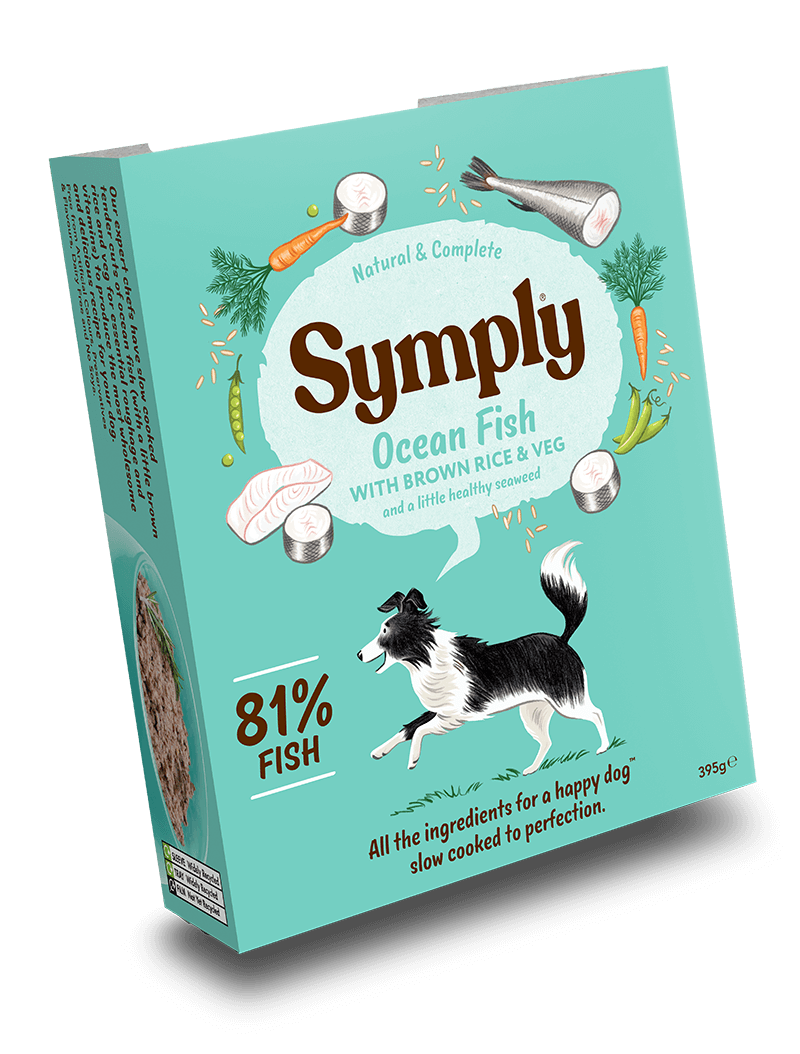 Symply Wet Food Ocean Fish Dog Food - Wet Symply