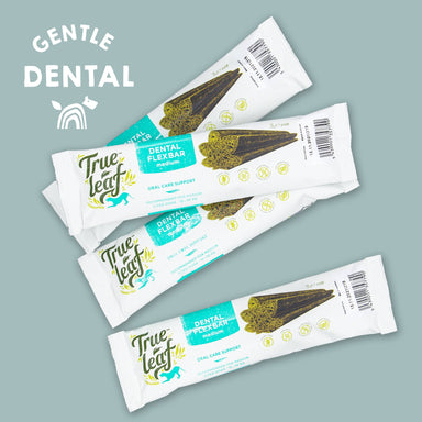 True Hemp Dental Flex Bar Large Bundle of 4 Dog Treats True Hemp