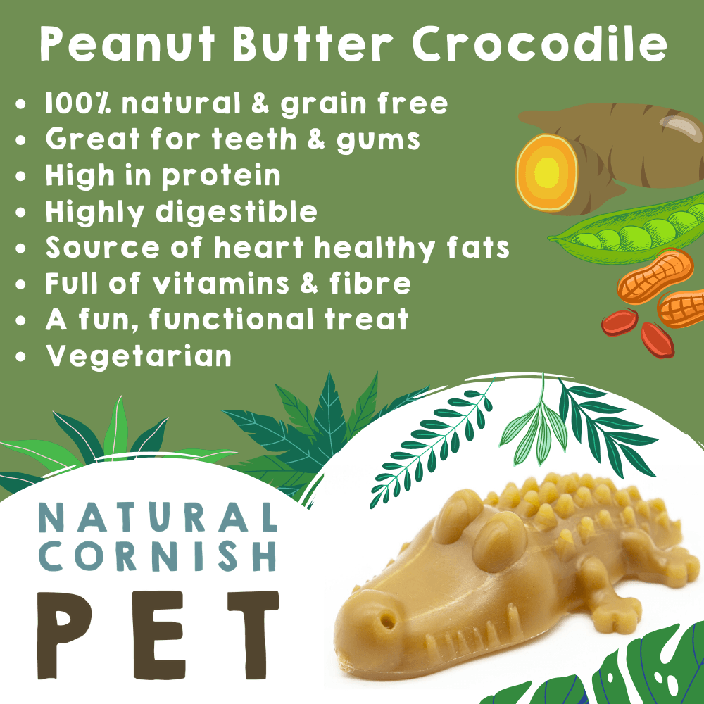 Vegetable & Peanut Butter Crocodile - Bundle of 10 Dog Treats Natural Cornish Pet