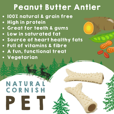 Vegetable & Peanut Butter Filled Antler Singles Dog Treats Natural Cornish Pet
