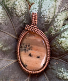 Honey Dendritic Agate wrapped in Copper