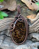 Uncommon Petrified Shrinkwood pendant in wire wrapped copper.