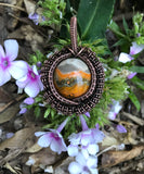Bumble Bee Jasper Pendant wrapped in Copper