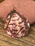 Natural Sea Shell wrapped in copper