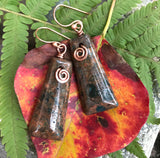 Cool Crazy Lace Agate Earrings