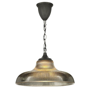 David Hunt Badger 1 Light Pendant Smoked/Steel