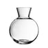 Balloon Carafe - Set of 2