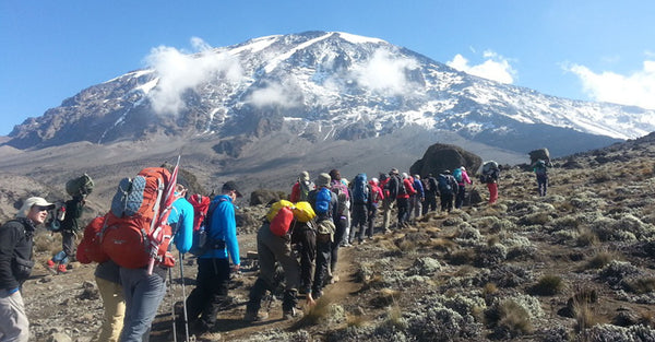 Conquer the Mighty Kilimanjaro