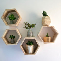 Wooden Hexagon Shelving