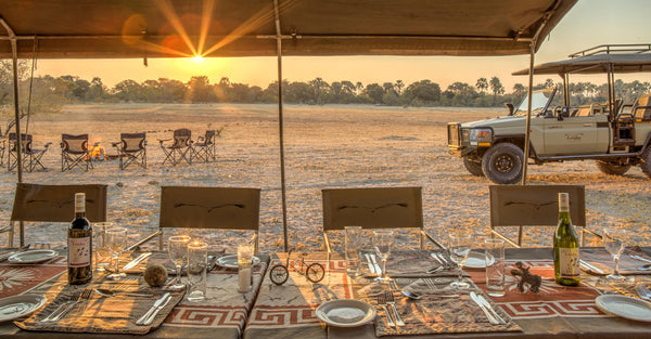 Mobile Safari in the Wilds of Botswana