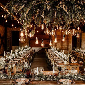 Wedding & Function Festoon Lights